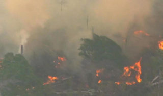 Diplomatic outrage over Amazon rainforest fires