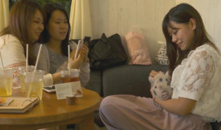 Inside the fierce competition of Japan's animal cafes