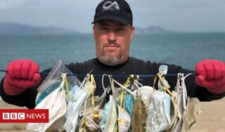 Coronavirus: 'The masks you throw away could end up killing a whale'