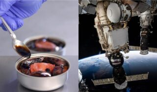 Out of this world! French cuisine set to be served up in space