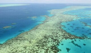 Australia against move to list Great Barrier Reef as 'in danger'