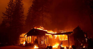 """""""Global fire crisis:"""" Why the world keeps burning and what we should do about it"""