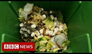 How can how we solve the planet's food waste problem? – BBC News