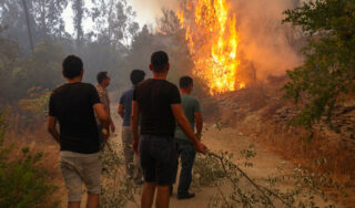 In Turkey, wildfires leave behind charred homes and ashes