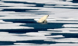 Melting Arctic could drive uncontrolled heating, scientists warn